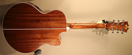 D Angelico Premier Madison back.JPG